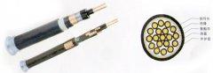 <b>氟塑料绝缘聚乙烯护套耐高温控制电缆</b>