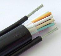 自承式钢丝电缆